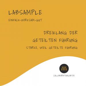 LabSample-Dreiklang-der-geteilten-Führung-Thumpnail