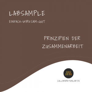 LabSample-Prinzipien-der-Zusammenarbeit-Thumpnail-Preview