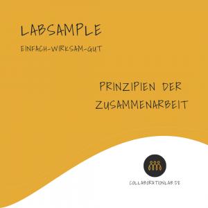 LabSample-Prinzipien-der-Zusammenarbeit-Thumpnail